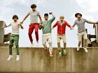 One Direction Amazing Liam Louis Zayn Niall Harry Giant Print POSTER Affiche